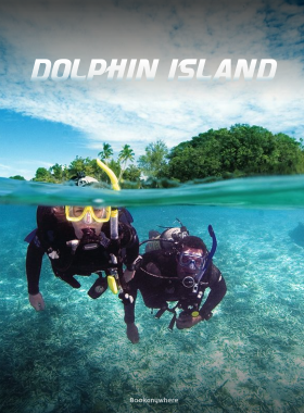Scuba Diving + Watersports at Dolphin Island Querim Beach