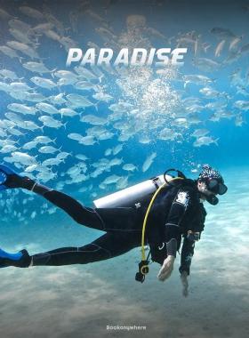 Scuba Diving at Shiroda Beach