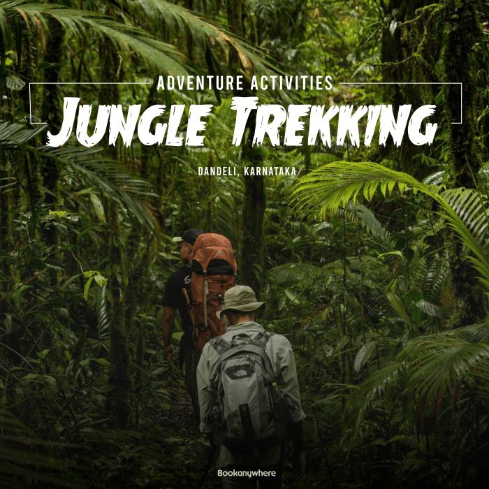 dandeli jungle trekking