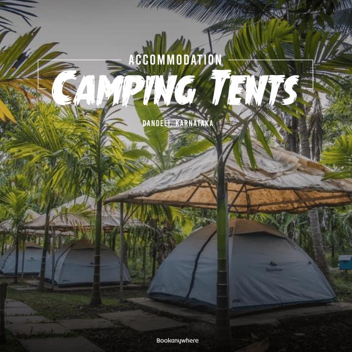 dandeli jungle tent stay