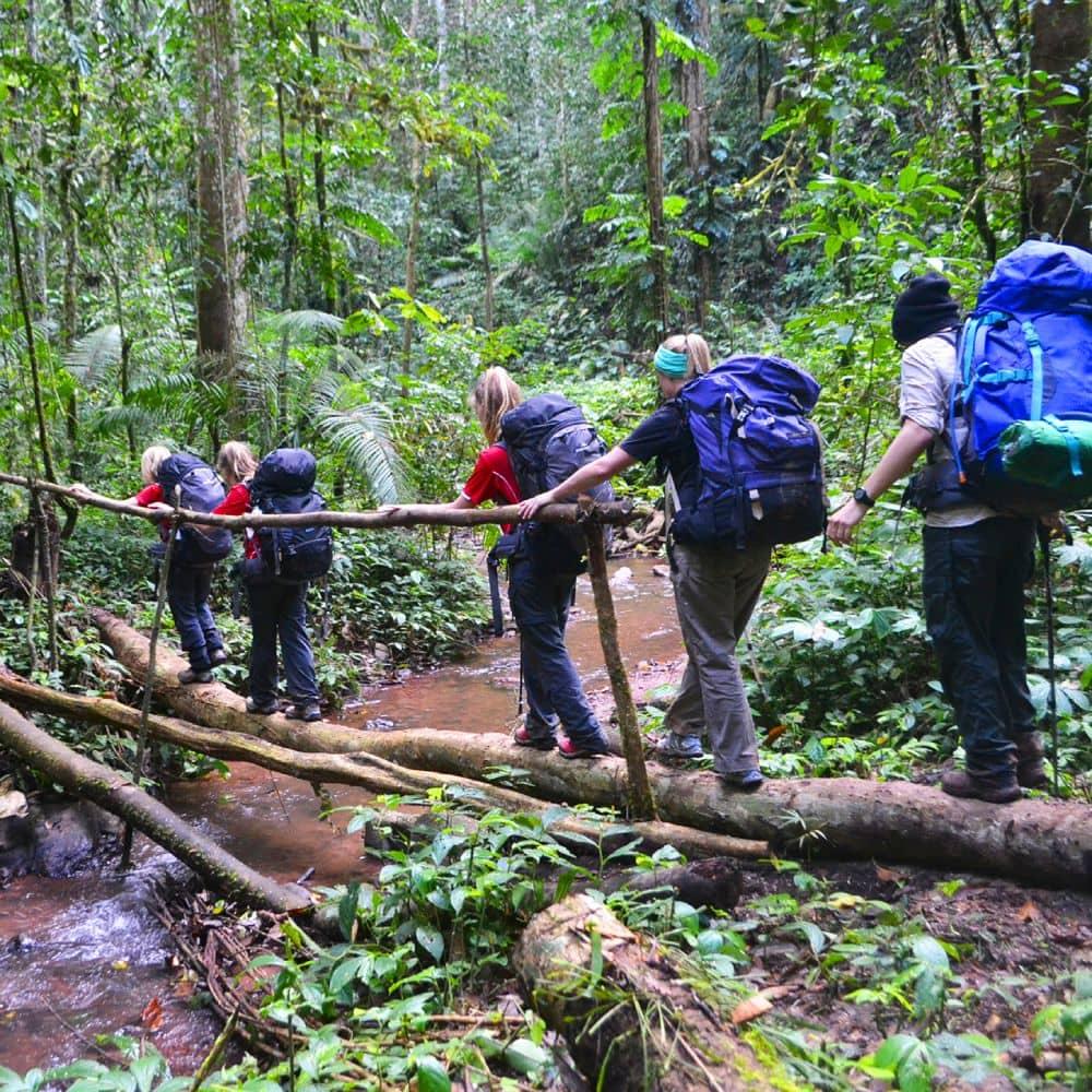 Dudhsagar Trek Goa 2021 - Guided 10 KM Trek